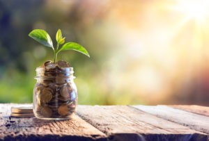 Picture of a small plant growing in a jar filled with coins