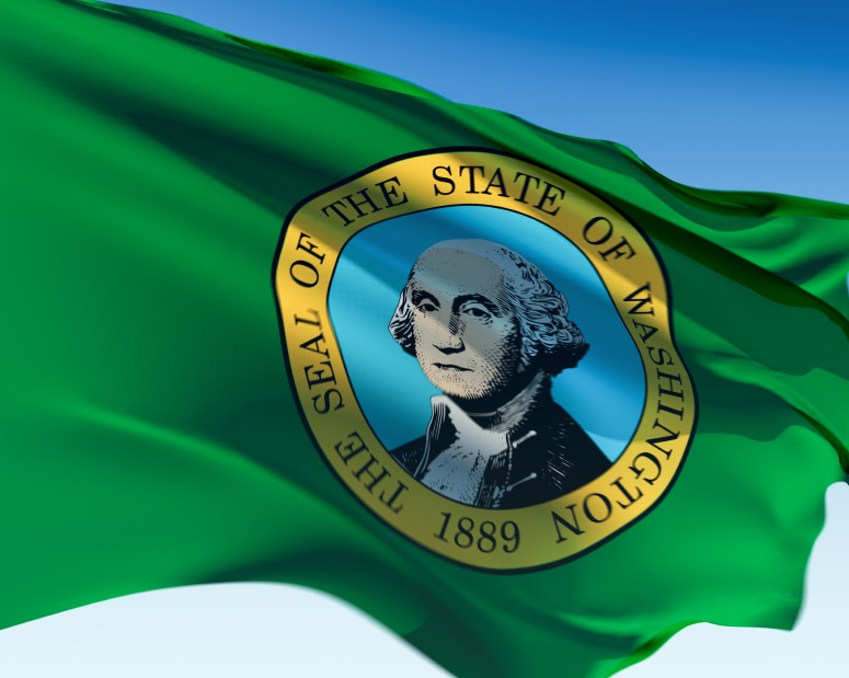 Picture of Washington state flag