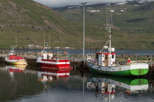Picture of boats in harbor