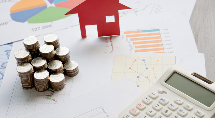 Real Estate Professional Audit Troubles