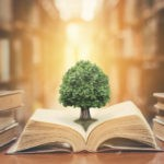 Picture of the tree of knowledge growing out a a book, a photo fro the Bogleheads three fund portfolio blog post