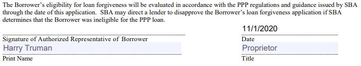 PPP forgiveness application form 3508S signature area
