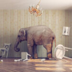Nearly secret IRS personal wealthy study an elephant in the room?